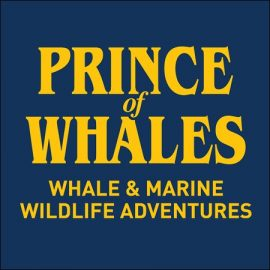 Prince of Whales logo