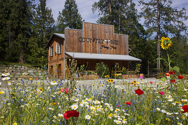 Country Bee Farm Be a Tourist in Your Own Town